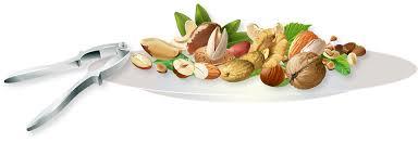 los frutos secos son fuentes de omega 3 para los gatos, pero de escasa biodisponibilidad
