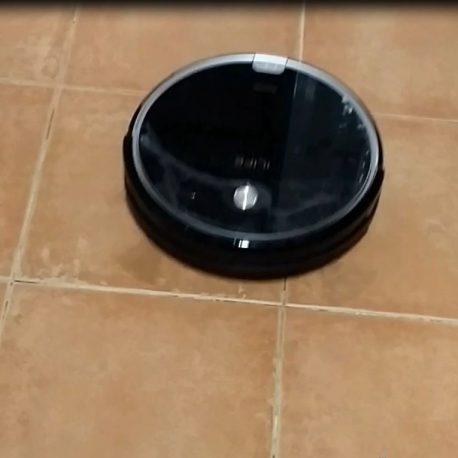robot aspirador pelo mascota