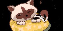 camas y descanso para mascotas