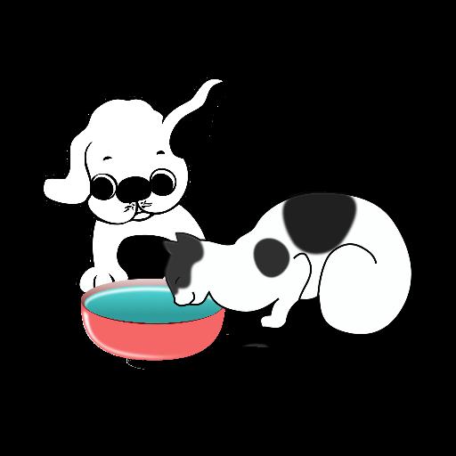 Cuencos Y Fuentes De Agua para mascotas