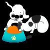 comederos para mascotas