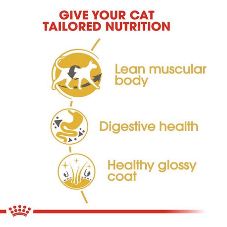Este pienso para gatos contiene L-carnitina, que es fuente de Luteína, un fitoquímico que coniene propiedades antioxidantes