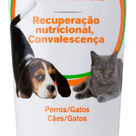 Para perror y gatos convalecientes
