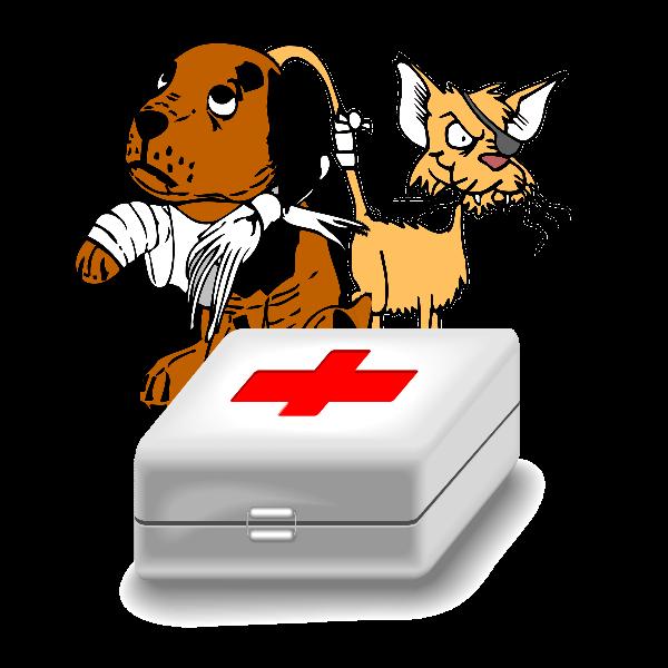 Salud Y Cuidados