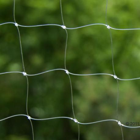 redes para gatos variedad invisible