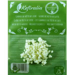 Cultivo de kéfir con gran diversidad de levaduras y bacterias beneficiosas, con supervisión sanitaria y garantía microbiológica