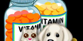 complementos y suplementos nutricionales para mascotas