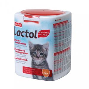 Lactol, leche para gatitos bebé