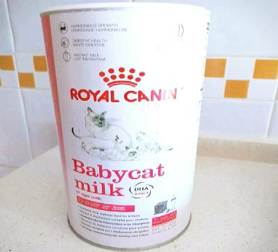 Babycat milk, leche de sustitución para gatitos