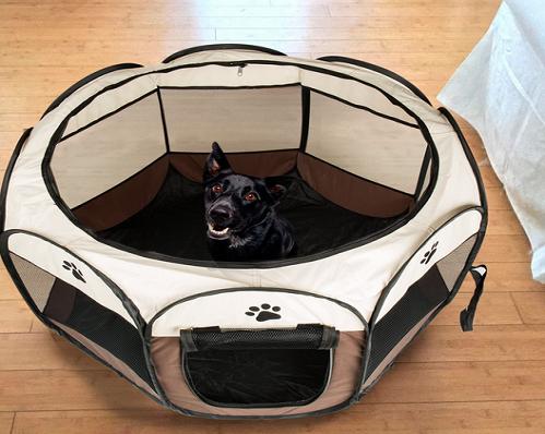 para la intimidad, comodidad, y seguridad de nuestras mascotas, en determinadas circunstancias