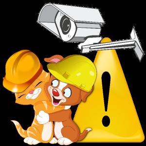 productos para la seguridad de las mascotas